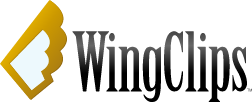 WingClips